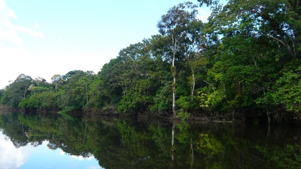 la tierra-rio amazonas